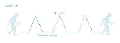 caveman stress & maintenance