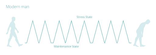 modern man stress & maintenance